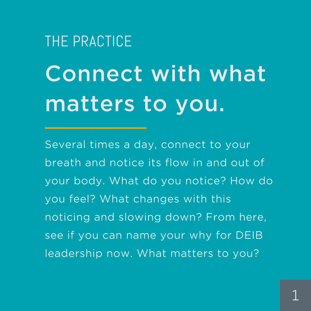 Practice: Connect with what matters to you. Several times a day, connect to your breath and notice its flow in and out of your body. What do you notice? How do you feel? What changes with this noticing and slowing down? From here, see if you can name your why for DEIB leadership now. What matters to you?