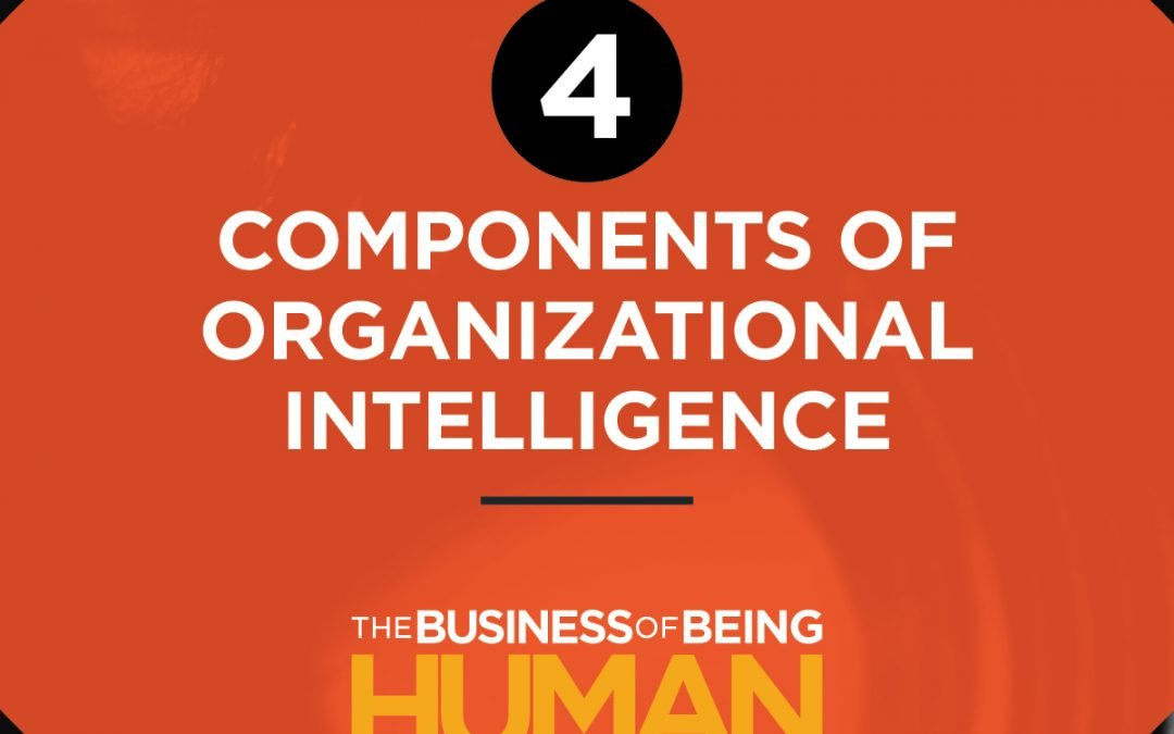EP 11:  The Four Components of Organizational Intelligence